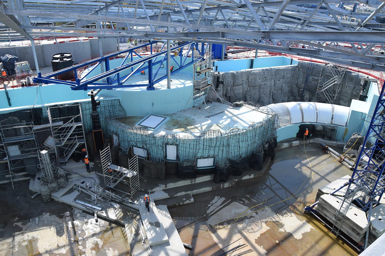 D cors b ton dans le bassin du chantier grand nausicaa - Amenagement bassin poisson boulogne billancourt ...